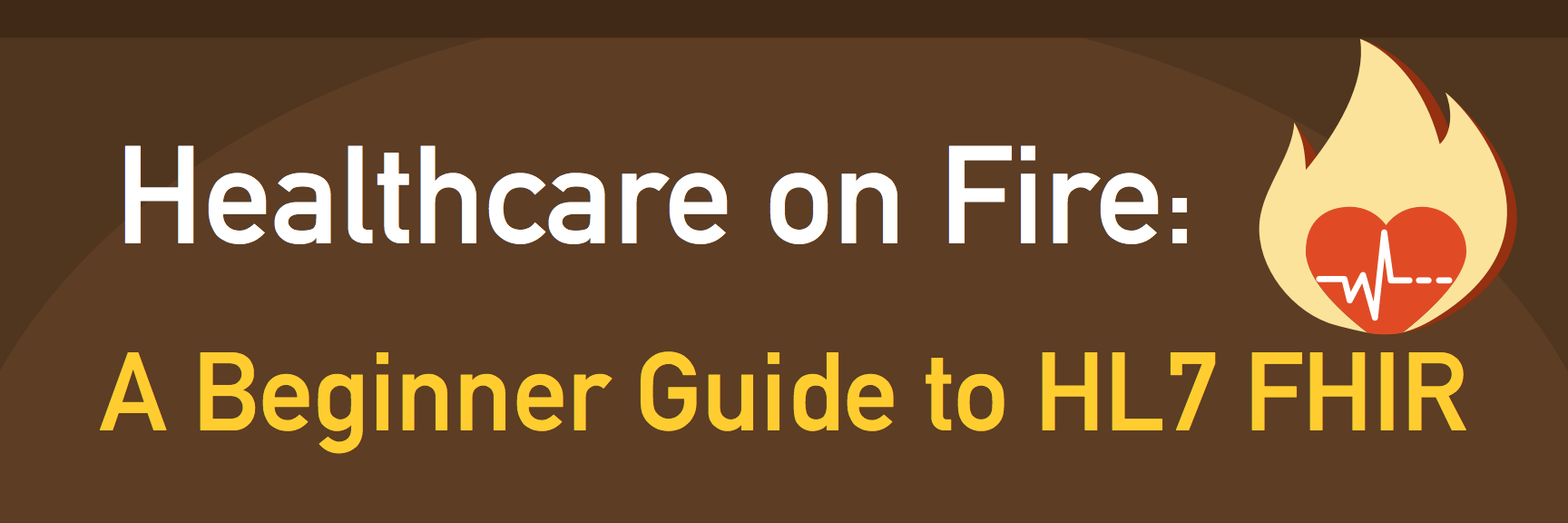 healthcare on fire a beginner guide to HL7 FHIR